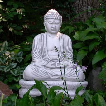 buddha i trädgård